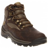 Timberland Chocorua Trail Mid Waterproof Hiking Boot